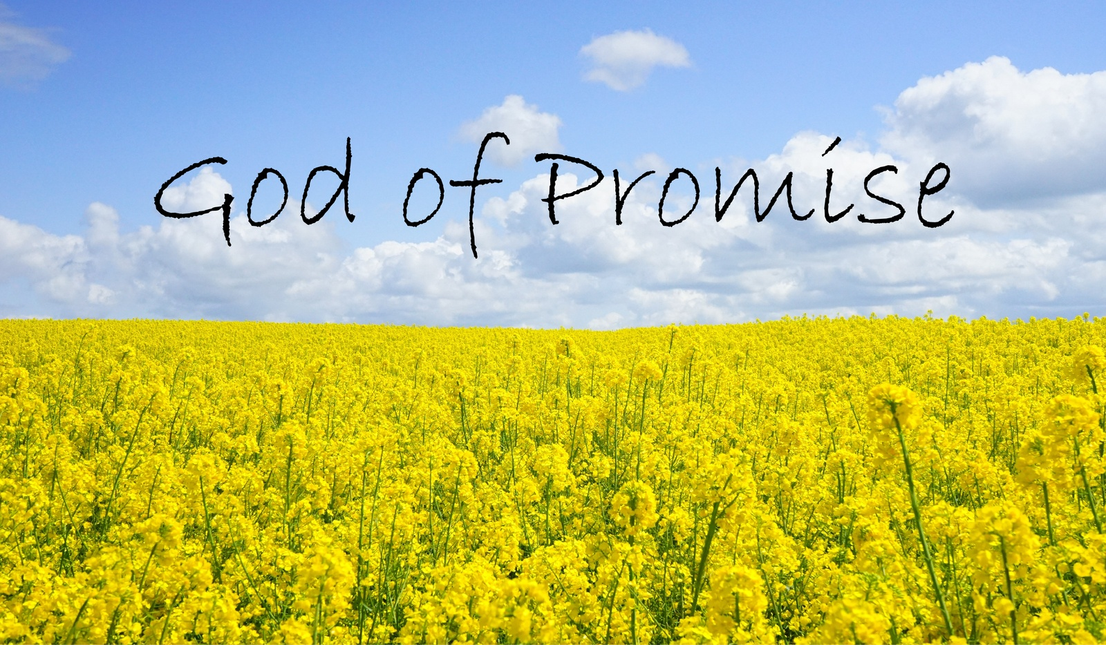 God of Promise-01